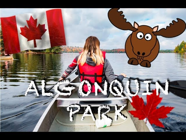 CANOEING & HIKING IN ALGONQUIN PARK – TORONTO – CANADATRIP