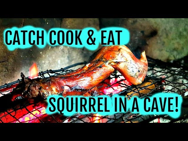 Cooking Squirrel In A Cave! | Wild Camping & Ale Reviews