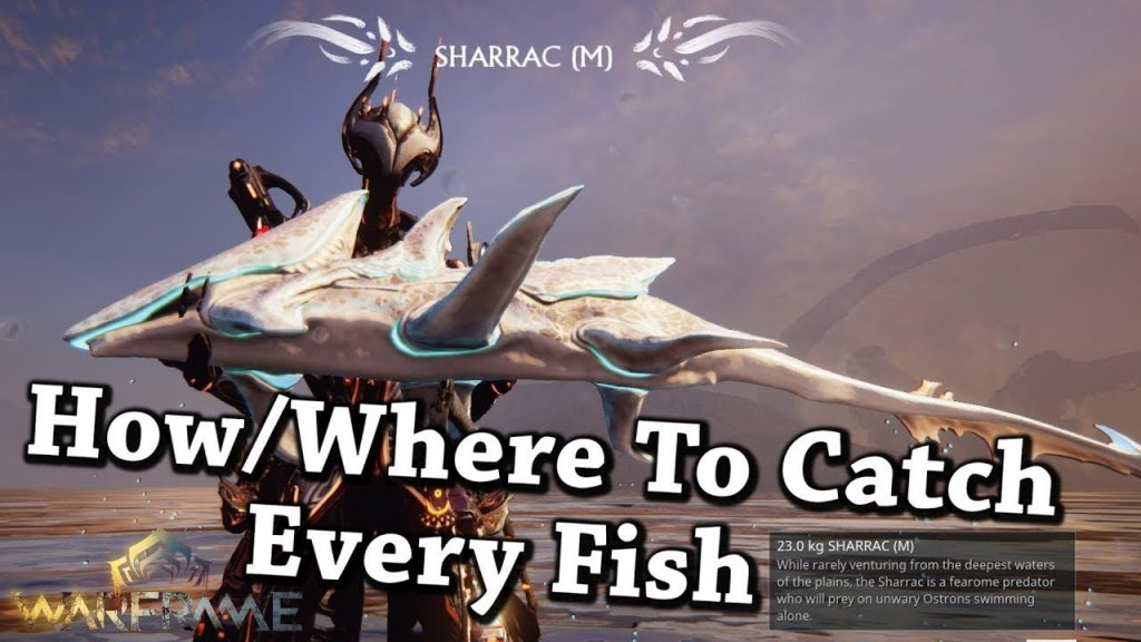 Warframe | How/Where To Catch Every Fish In Plains of Eidolon