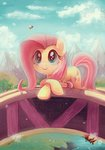 bees bridge fluttershy lazyperson202