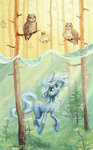 diving forest highres koviry owl swimming the_great_and_powerful_trixie