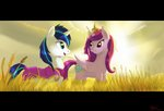 absurdres greenbrothersart highres princess_cadance shining_armor