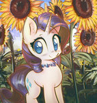 flowers mirroredsea rarity