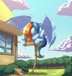 bird_feeder crosshatching highres huge_jerk otakuap pegasi_acting_like_birds rainbow_dash