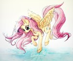 fluttershy highres traditional_art zetamad
