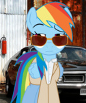 burn_notice crossover glasses rainbow_dash sefling sunglasses
