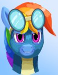 camyllea goggles rainbow_dash wonderbolts