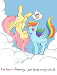 flutterdash fluttershy rainbow_dash shipping text wang_okawari