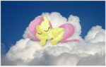fluttershy pacpony photoshop