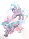 cloudchaser flitter helicityponi
