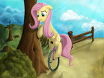 fluttershy hereticalrants highres unicycle