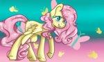fluttershy lucy1123
