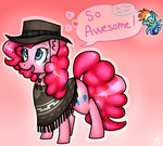 hat highres kikirdcz pinkie_pie poncho rainbow_dash