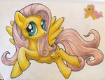 andpie fluttershy traditional_art