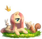 absurdres angel bird flowers fluttershy grass highres r-1629 squirrel