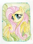 fluttershy highres sararichard traditional_art