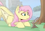 bird fluttershy highres render_point