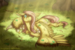 duck fluttershy grass highres inuhoshi-to-darkpen