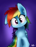 highres rainbow_dash sheandog