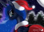 coat groovebird hat princess_luna santa_hat