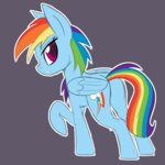 casualcolt rainbow_dash