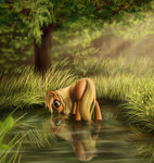 applejack drinking highres pond reflection tree zetamad
