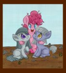 border compression_artifacts filly highres jazzekat limestone_pie marble_pie pinkie_pie siblings