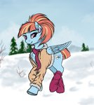 clothes highres jacket pony-way scarf snow windy_whistles winter