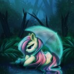 bird cabbage-arts fluttershy rain trees umbrella
