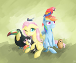 awsdemlp barn_swallow bird fluttershy kingfisher owl parrot penguin rainbow_dash toucan