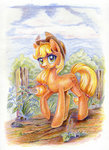 applejack highres maytee traditional_art