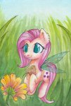 0okami-0ni absurdres fairy flowers fluttershy highres traditional_art