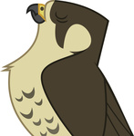falcon highres transparent vector x-discord-x