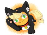 aosion applejack cat costume