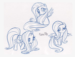 caakes fim_crew fluttershy production_art