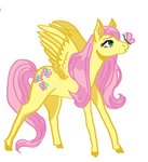 butterfly fluttershy highres lilmothie