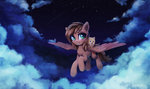 absurdres cloud dog flying highres inowiseei nighttime original_character
