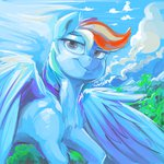 dimfann highres rainbow_dash