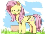 eating fluttershy grass highres j24262756