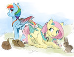 alternate_universe fluttershy rabbit rainbow_dash silfoe