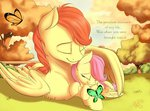 butterfly filly fluttershy highres nobody47 original_character