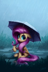 fluttershy highres lolliponybrony rain umbrella