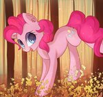 autumn autumnvoyage highres leaves pinkie_pie trees