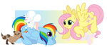 angel body_swap fluttershy immortaltanuki raccoon rainbow_dash transparent
