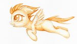 0okami-0ni filly highres spitfire traditional_art