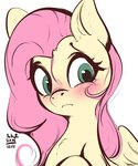 fluttershy tohupo