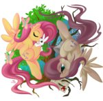 angel contrast discordified falleninthedark fluttershy highres transparent