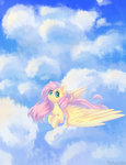 cloud fluttershy highres melloncollie-chan