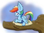 egg heir-of-rick nest pegasi_acting_like_birds rainbow_dash