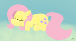 fluttershy sleeping westy543